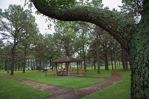 shady picnic area and playground