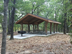 picnic shelter under tall trees with a large grill