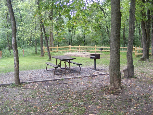 a picnic table and grill under tall trees