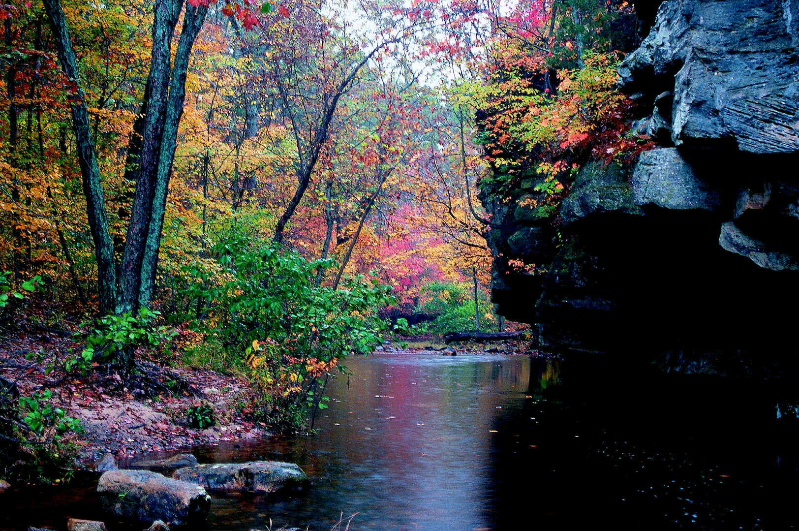 a rock bluff above a creek with lots of fall color at Hawn State Park