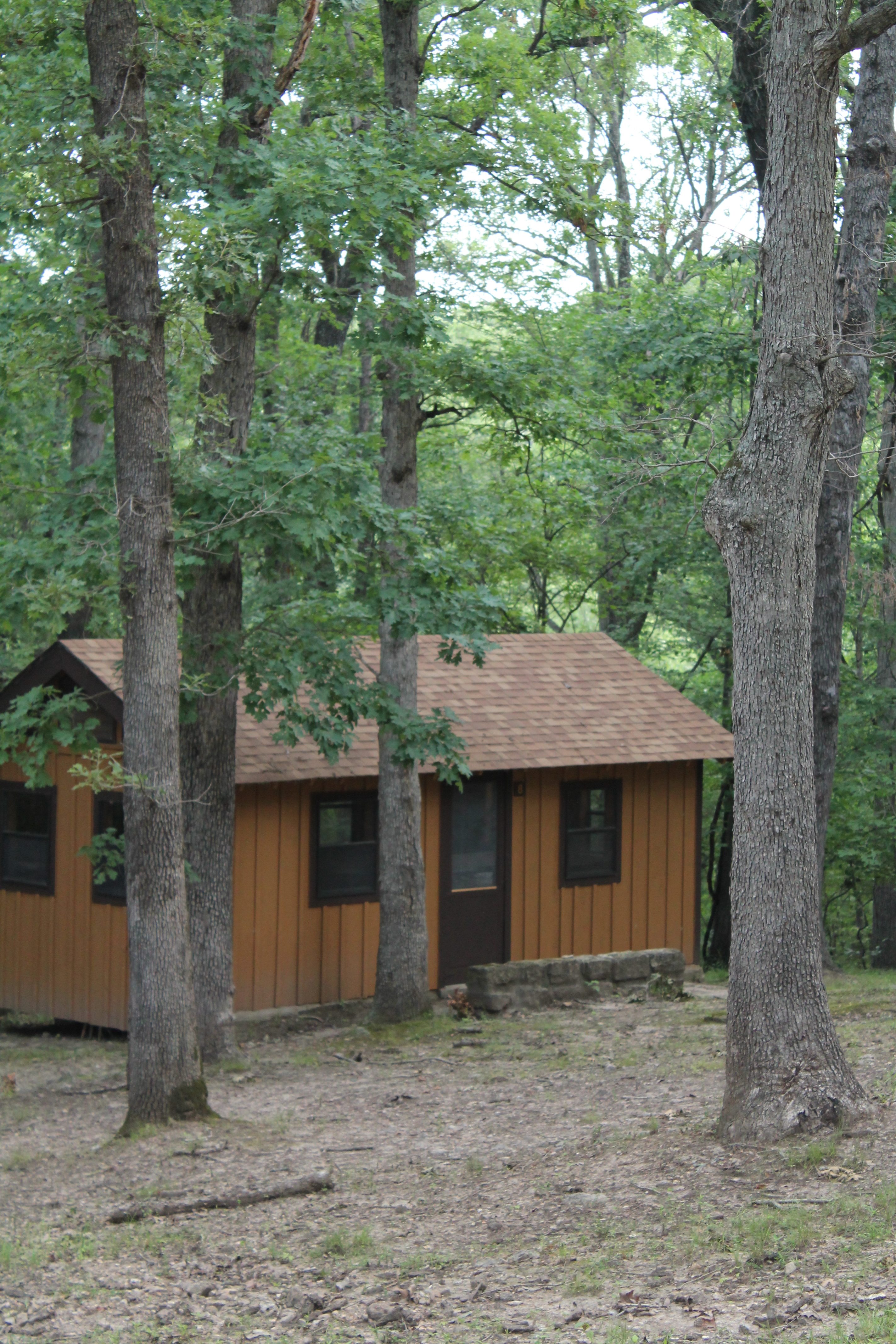 cabin exterior below lofty trees