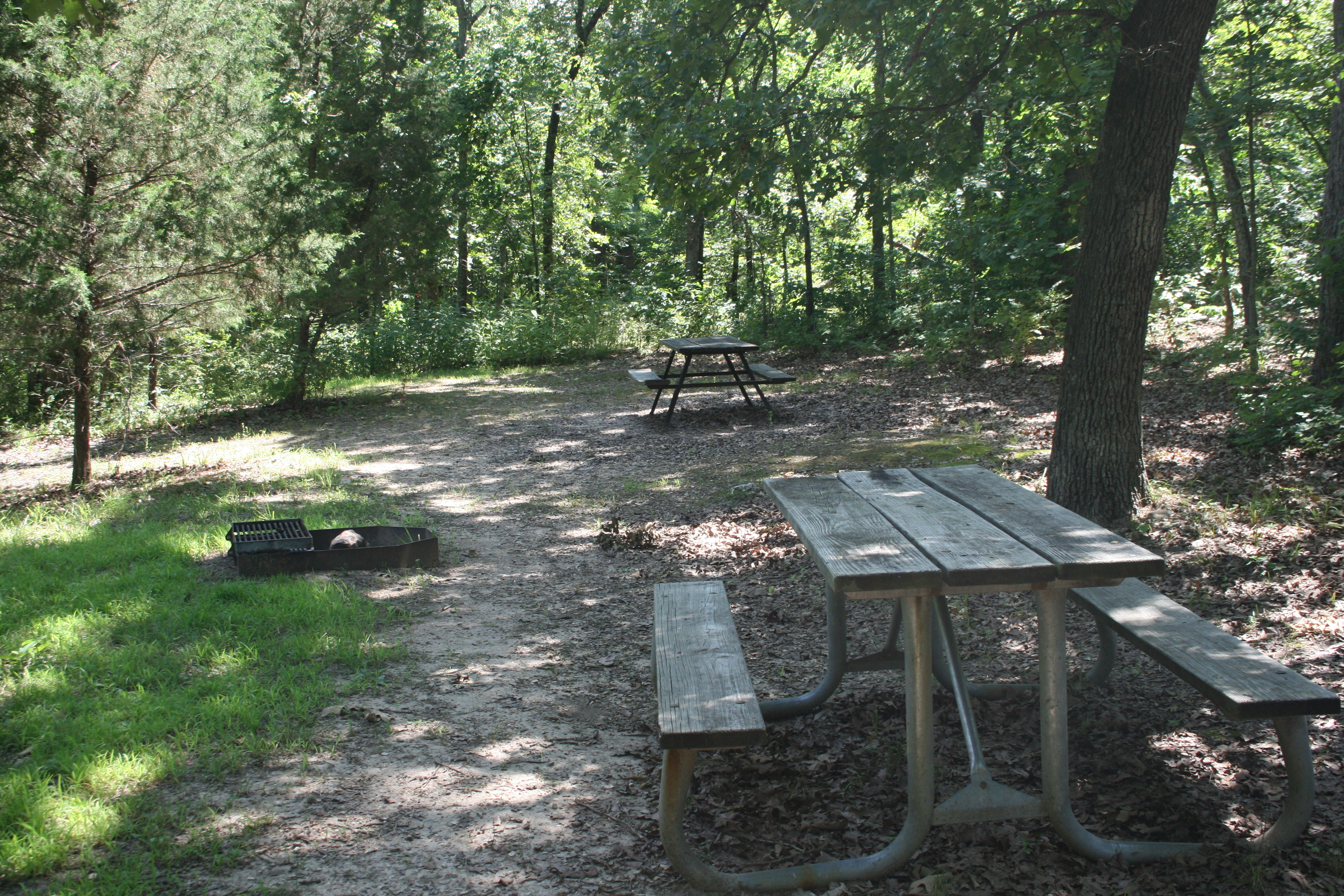 picnic tables in the special-use area
