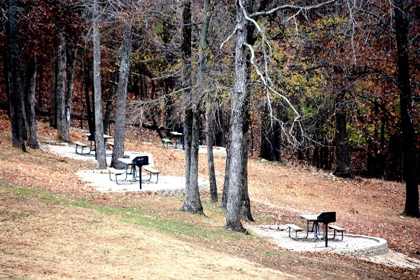 three picnic tables on conctete pads scattered under tall trees