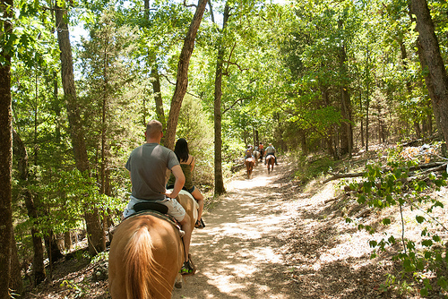 people riding horses on one of the trails