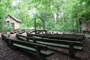 curved rows of wooden benches in the amphitheater