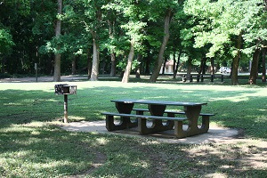 a picnic table and grill under a shade tree