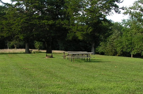 some picnic tables and a fire ring in an open area