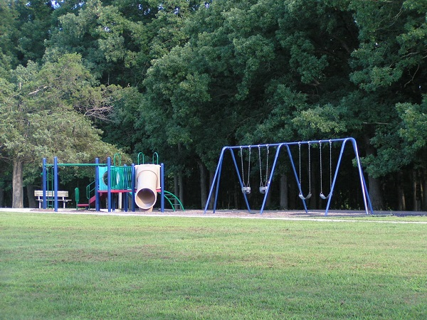 playground equipment with slides and monkey bars and a swing set