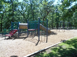 playground equipment with a slide and monkey bars and a swing set