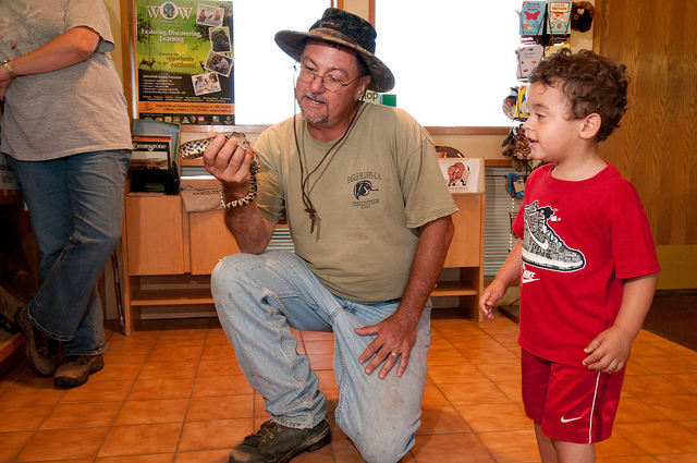 a little boy looking at a snake in a naturalists hand
