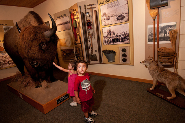 two toddlers looking at the bison and other exhibits in the visitor center