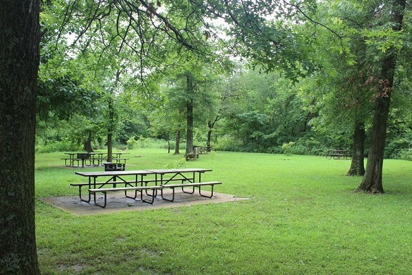 two picnic tables on a concrete slab next to a grill in a shaded picnic area