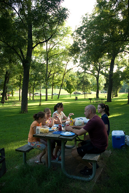 family sitting around a picnic table enjoying lunch in a shaded area