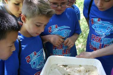 kids looking at insects in a tub of sand