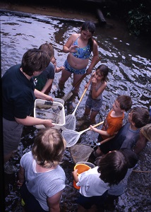 a naturalist and a group of kids use nets to discover aquatic life