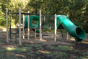 playground equipment with slides and monkey bars
