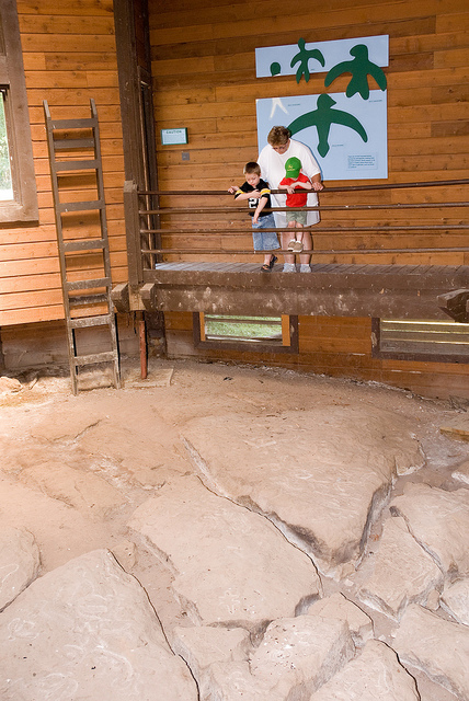 a family looking over the railing at the petroglyphs inside the petroglyph shelter