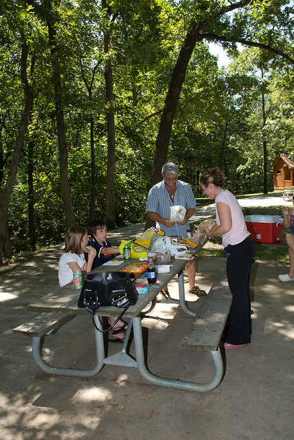 a family enjoys a picnic lunch at a shaded picnic table