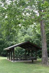 a picnic shelter under a large shad tree