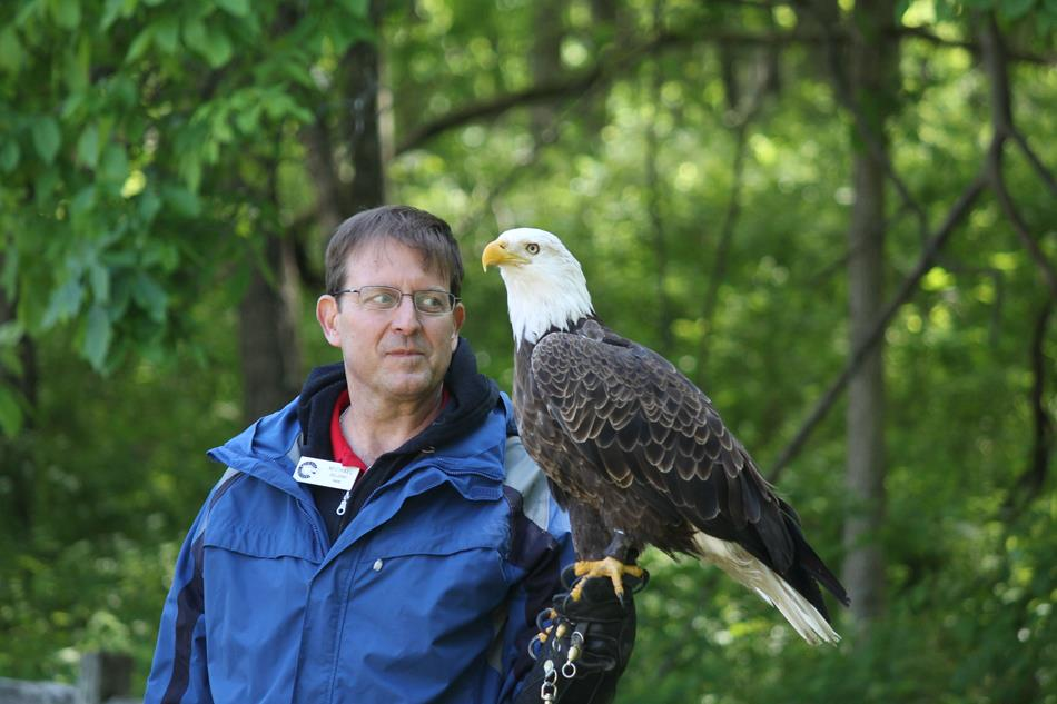 man holding a bald eagle