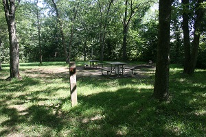 picnic tables in a shaded area