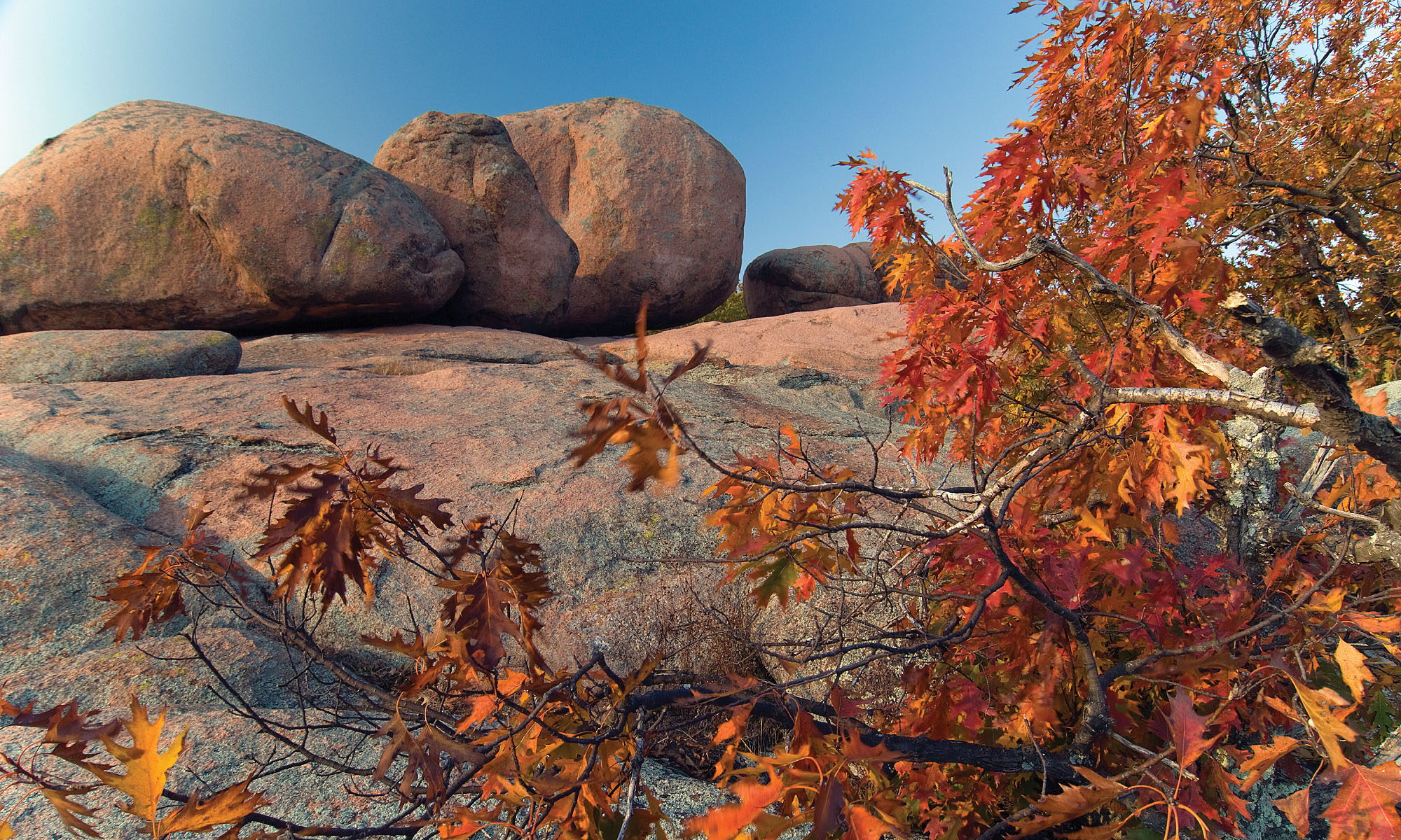 giant boulders on top of a rock bed with fall color trees in the foreground