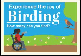 Birding in Missouri State Parks