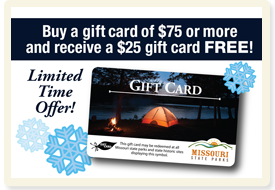 2018 Gift Card Promo