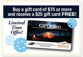 2019 Gift Card Promotion