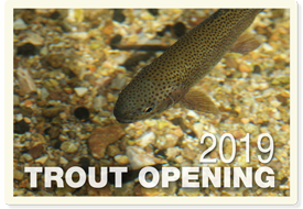 Trout Opening 2019