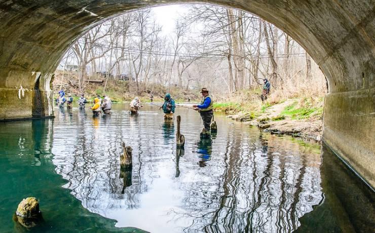 Bennett spring state park missouri state parks for Bennett springs trout fishing