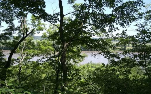 Clark's Hill/Norton State Historic Site   Missouri State Parks