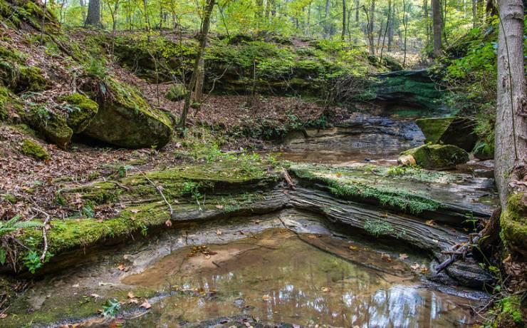 Don Robinson State Park   Missouri State Parks on