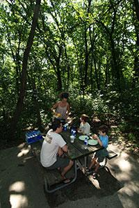 a family of four enjoys lunch at a shaded picnic table