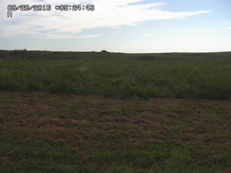 Prairie Cam